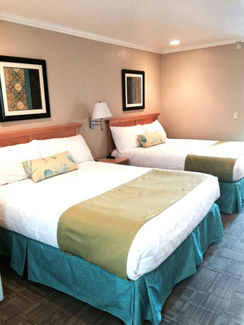 Relax In Our Well-Appointed Guest Rooms